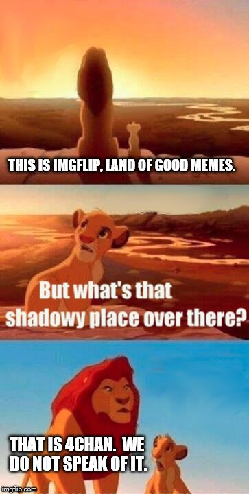 4chan - land of shadows. | THIS IS IMGFLIP, LAND OF GOOD MEMES. THAT IS 4CHAN.  WE DO NOT SPEAK OF IT. | image tagged in memes,simba shadowy place,4chan,imgflip | made w/ Imgflip meme maker
