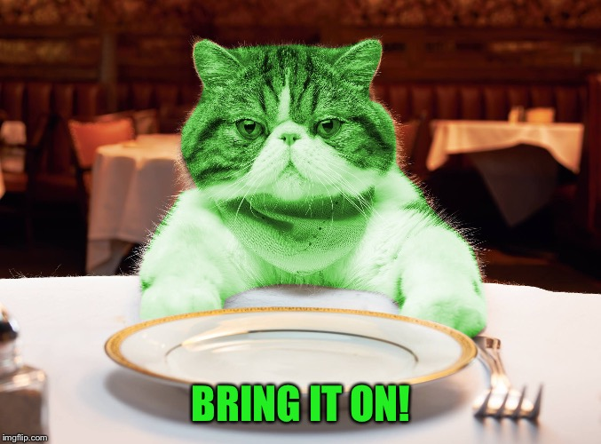 RayCat Hungry | BRING IT ON! | image tagged in raycat hungry | made w/ Imgflip meme maker