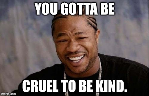 Yo Dawg Heard You Meme | YOU GOTTA BE CRUEL TO BE KIND. | image tagged in memes,yo dawg heard you | made w/ Imgflip meme maker
