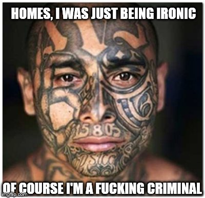 HOMES, I WAS JUST BEING IRONIC OF COURSE I'M A F**KING CRIMINAL | made w/ Imgflip meme maker