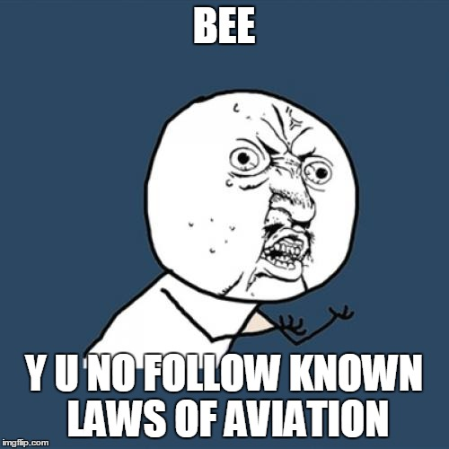 Y U No Meme | BEE Y U NO FOLLOW KNOWN LAWS OF AVIATION | image tagged in memes,y u no | made w/ Imgflip meme maker