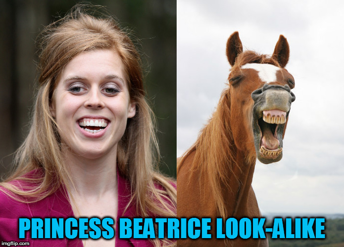 PRINCESS BEATRICE LOOK-ALIKE | image tagged in kedar joshi,princess beatrice,horse face,funny horse face,lookalike | made w/ Imgflip meme maker