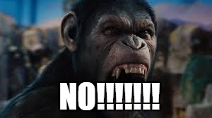 Me when someone asks me if they should see Planet of The Apes | NO!!!!!!! | image tagged in planet of the apes,no,memes | made w/ Imgflip meme maker