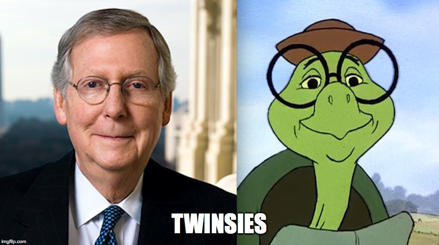 MCConnell Turtle | TWINSIES | image tagged in politics,turtle,republicans | made w/ Imgflip meme maker