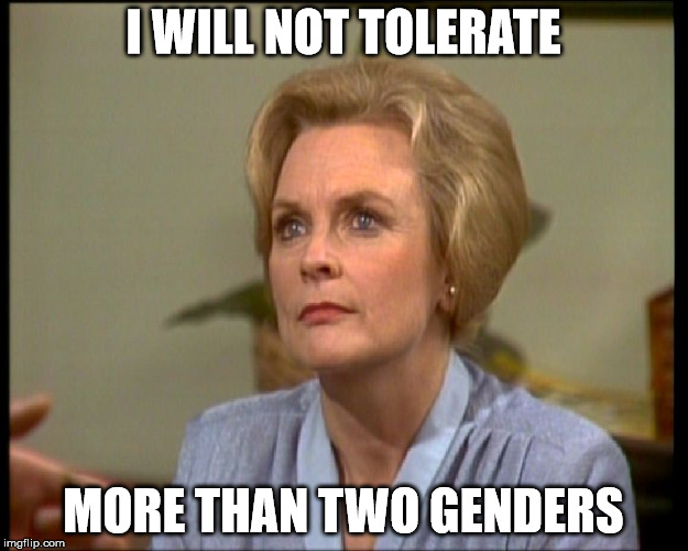 I WILL NOT TOLERATE MORE THAN TWO GENDERS | image tagged in erica davidson prisoner cell block h | made w/ Imgflip meme maker