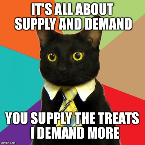 Business Cat Meme | IT'S ALL ABOUT SUPPLY AND DEMAND YOU SUPPLY THE TREATS  I DEMAND MORE | image tagged in memes,business cat | made w/ Imgflip meme maker