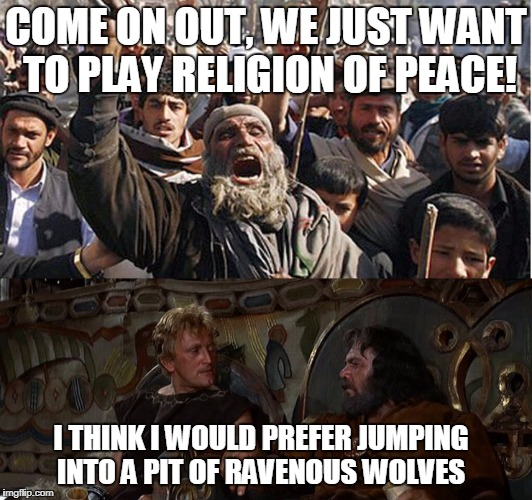 AT LEAST WOLVES DON'T LIE ABOUT THEIR INTENTIONS | COME ON OUT, WE JUST WANT TO PLAY RELIGION OF PEACE! I THINK I WOULD PREFER JUMPING INTO A PIT OF RAVENOUS WOLVES | image tagged in muslims,vikings,angry muslim,muslim terror | made w/ Imgflip meme maker