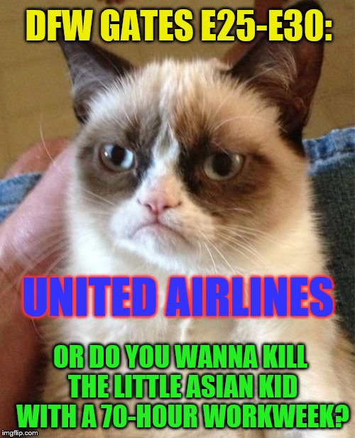 Grumpy Cat Meme | DFW GATES E25-E30: UNITED AIRLINES OR DO YOU WANNA KILL THE LITTLE ASIAN KID WITH A 70-HOUR WORKWEEK? | image tagged in memes,grumpy cat | made w/ Imgflip meme maker