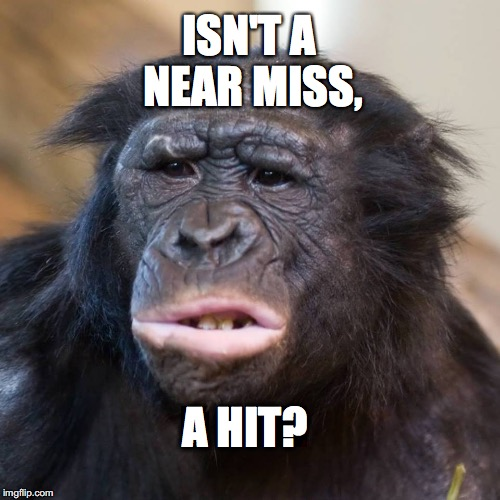 should be a near hit | ISN'T A NEAR MISS, A HIT? | image tagged in confusedbonobo,meme,confused | made w/ Imgflip meme maker