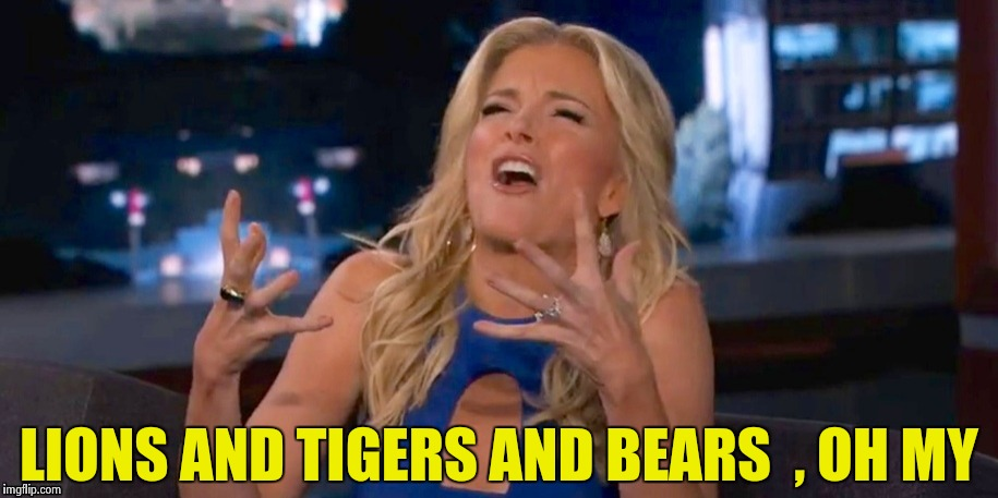 Megan Kelley | LIONS AND TIGERS AND BEARS  , OH MY | image tagged in megan kelley | made w/ Imgflip meme maker