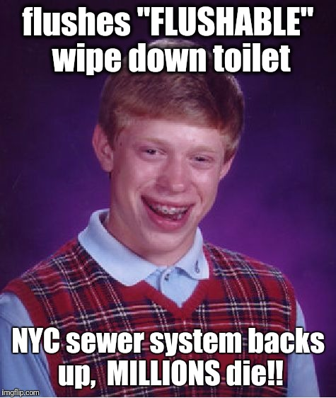 "Bad Luck Brian Meme | flushes ""FLUSHABLE"" wipe down toilet NYC sewer system backs up,  MILLIONS die!! 