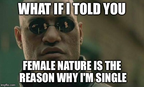 Matrix Morpheus Meme | WHAT IF I TOLD YOU FEMALE NATURE IS THE REASON WHY I'M SINGLE | image tagged in memes,matrix morpheus | made w/ Imgflip meme maker