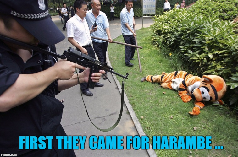 First They Came For Harambe | FIRST THEY CAME FOR HARAMBE ... | image tagged in harambe,tiger,resist,dicksoutforharambe,memes,funny | made w/ Imgflip meme maker