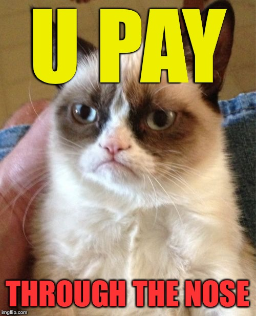 Grumpy Cat Meme | U PAY THROUGH THE NOSE | image tagged in memes,grumpy cat | made w/ Imgflip meme maker