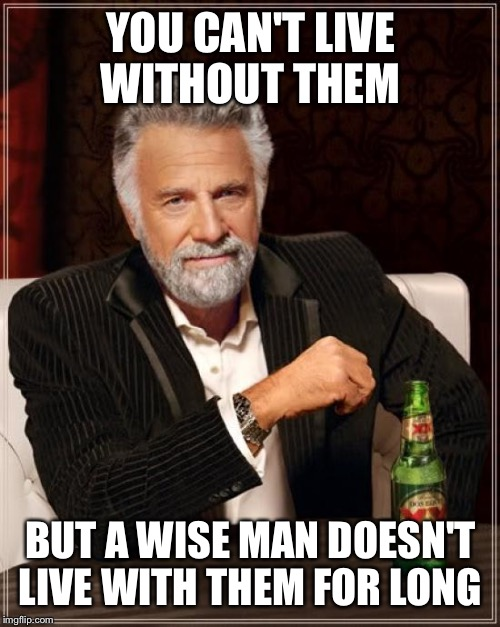 The Most Interesting Man In The World Meme | YOU CAN'T LIVE WITHOUT THEM BUT A WISE MAN DOESN'T LIVE WITH THEM FOR LONG | image tagged in memes,the most interesting man in the world | made w/ Imgflip meme maker