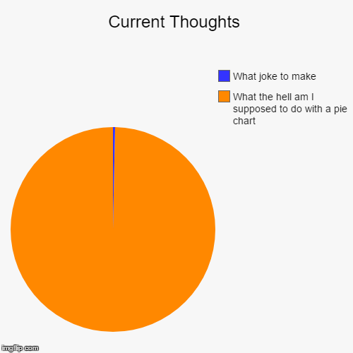 Current Thoughts | What the hell am I supposed to do with a pie chart, What joke to make | image tagged in funny,pie charts | made w/ Imgflip pie chart maker