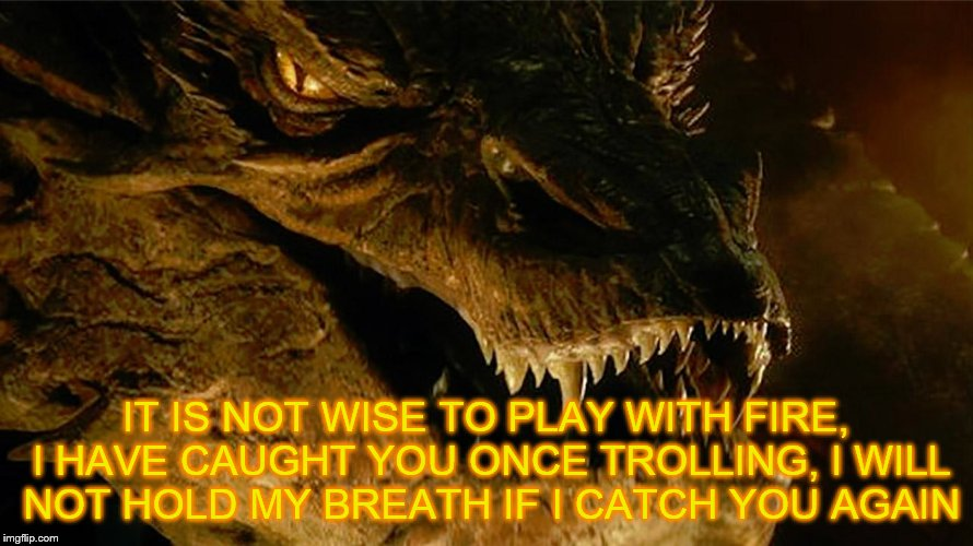 IT IS NOT WISE TO PLAY WITH FIRE, I HAVE CAUGHT YOU ONCE TROLLING, I WILL NOT HOLD MY BREATH IF I CATCH YOU AGAIN | made w/ Imgflip meme maker