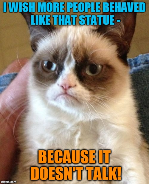 Grumpy Cat Meme | I WISH MORE PEOPLE BEHAVED LIKE THAT STATUE - BECAUSE IT DOESN'T TALK! | image tagged in memes,grumpy cat | made w/ Imgflip meme maker