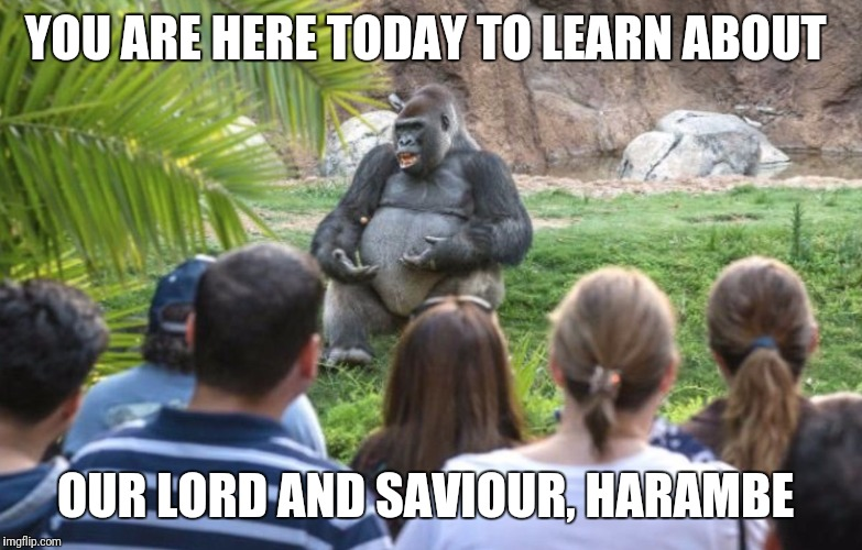 YOU ARE HERE TODAY TO LEARN ABOUT OUR LORD AND SAVIOUR, HARAMBE | image tagged in memes | made w/ Imgflip meme maker