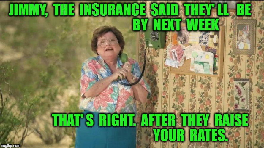 JIMMY,  THE  INSURANCE  SAID  THEY' LL   BE                                   BY  NEXT  WEEK THAT' S  RIGHT.  AFTER  THEY  RAISE             | image tagged in state farm old lady on the phone | made w/ Imgflip meme maker