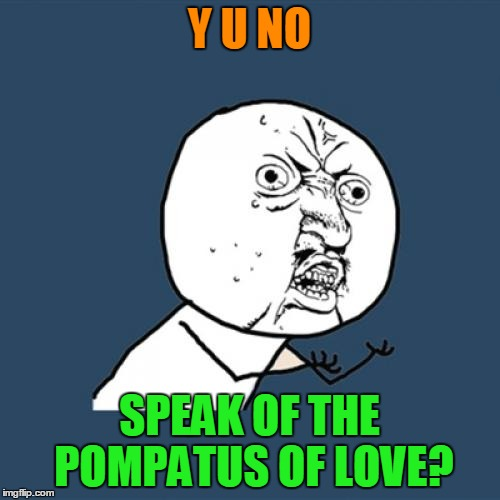 Y U No Meme | Y U NO SPEAK OF THE POMPATUS OF LOVE? | image tagged in memes,y u no | made w/ Imgflip meme maker