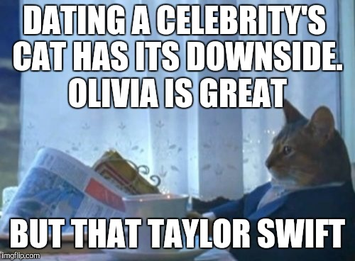 Hang in there kitty. What's the worst she could do? Write a song...uh oh. | DATING A CELEBRITY'S CAT HAS ITS DOWNSIDE. OLIVIA IS GREAT BUT THAT TAYLOR SWIFT | image tagged in memes,i should buy a boat cat,funny,celebs,celebrity,pet humor | made w/ Imgflip meme maker