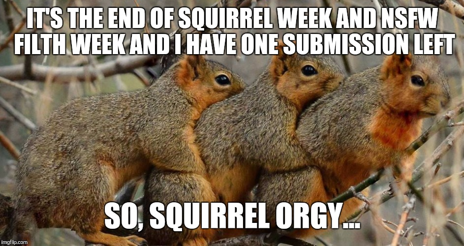 Naughty squirrels!  | IT'S THE END OF SQUIRREL WEEK AND NSFW FILTH WEEK AND I HAVE ONE SUBMISSION LEFT SO, SQUIRREL ORGY... | image tagged in jbmemegeek,squirrel week,nsfw filth week,orgy | made w/ Imgflip meme maker