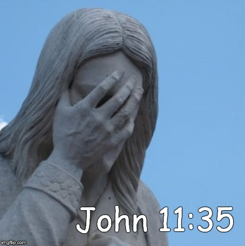 When Jesus saw Mary weep & noticed the tears of those who came with her, He was deeply moved and visibly distressed (verse 33) | John 11:35 | image tagged in facepalm jesus,jesus wept,moved to tears,weeping,compassion,compassionate | made w/ Imgflip meme maker