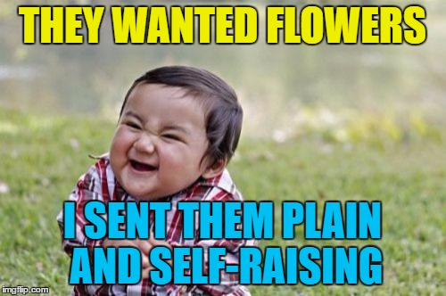 Evil Toddler Meme | THEY WANTED FLOWERS I SENT THEM PLAIN AND SELF-RAISING | image tagged in memes,evil toddler | made w/ Imgflip meme maker