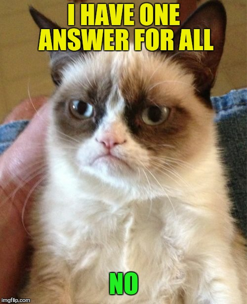 Grumpy Cat Meme | I HAVE ONE ANSWER FOR ALL NO | image tagged in memes,grumpy cat | made w/ Imgflip meme maker