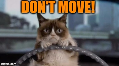 DON'T MOVE! | made w/ Imgflip meme maker