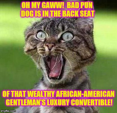 OH MY GAWW!  BAD PUN DOG IS IN THE BACK SEAT OF THAT WEALTHY AFRICAN-AMERICAN GENTLEMAN'S LUXURY CONVERTIBLE! | made w/ Imgflip meme maker