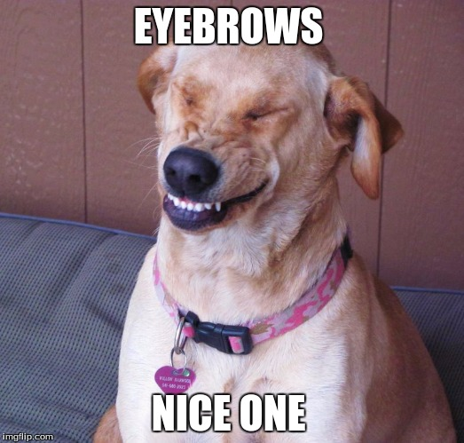 EYEBROWS NICE ONE | made w/ Imgflip meme maker