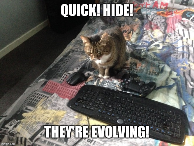 QUICK! HIDE! THEY'RE EVOLVING! | image tagged in technology cat | made w/ Imgflip meme maker