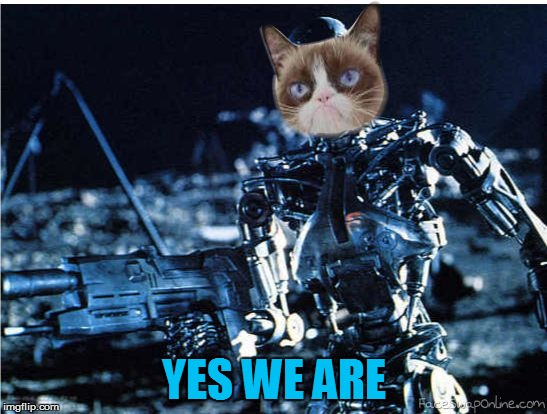 grump cat terminator | YES WE ARE | image tagged in grump cat terminator | made w/ Imgflip meme maker