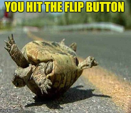 YOU HIT THE FLIP BUTTON | made w/ Imgflip meme maker