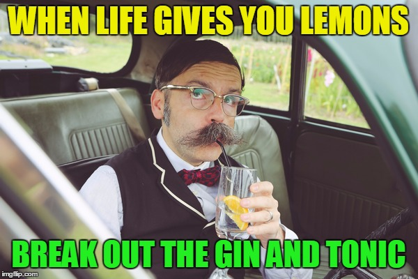WHEN LIFE GIVES YOU LEMONS BREAK OUT THE GIN AND TONIC | made w/ Imgflip meme maker