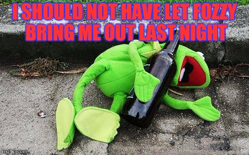 Drunk Kermit | I SHOULD NOT HAVE LET FOZZY BRING ME OUT LAST NIGHT | image tagged in drunk kermit | made w/ Imgflip meme maker