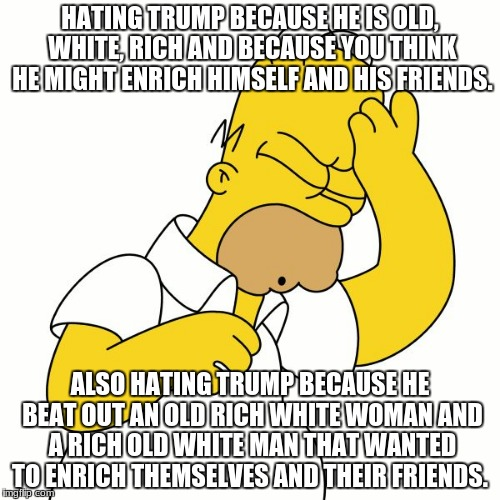 Doh | HATING TRUMP BECAUSE HE IS OLD, WHITE, RICH AND BECAUSE YOU THINK HE MIGHT ENRICH HIMSELF AND HIS FRIENDS. ALSO HATING TRUMP BECAUSE HE BEAT | image tagged in doh | made w/ Imgflip meme maker