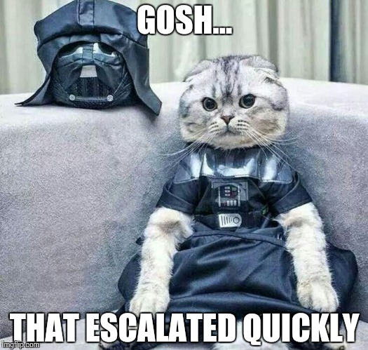 Pentest Moments | GOSH… THAT ESCALATED QUICKLY | image tagged in darth cat,memes,funny,security,test | made w/ Imgflip meme maker