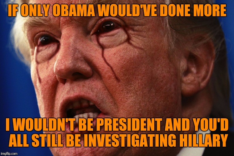 Lame Drumpf | IF ONLY OBAMA WOULD'VE DONE MORE I WOULDN'T BE PRESIDENT AND YOU'D ALL STILL BE INVESTIGATING HILLARY | image tagged in lame drumpf | made w/ Imgflip meme maker