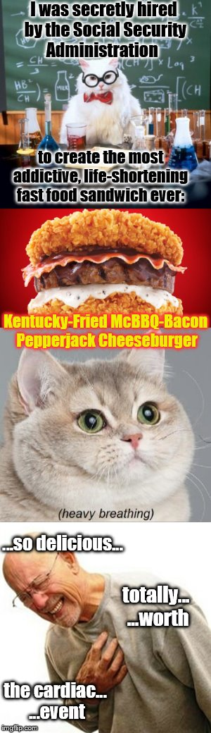 Shoring up Social Security's long-term financial viability... | I was secretly hired by the Social Security Administration to create the most addictive, life-shortening fast food sandwich ever: Kentucky-F | image tagged in memes,cats,funny,phunny,fast food,animals | made w/ Imgflip meme maker