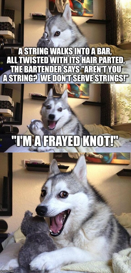 "Bad Pun Dog Meme | A STRING WALKS INTO A BAR, ALL TWISTED WITH ITS HAIR PARTED, THE BARTENDER SAYS ""AREN'T YOU A STRING?  WE DON'T SERVE STRINGS!"" ""I'M A FRAYE 