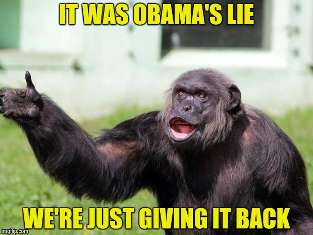 Gorilla your dreams | IT WAS OBAMA'S LIE WE'RE JUST GIVING IT BACK | image tagged in gorilla your dreams | made w/ Imgflip meme maker