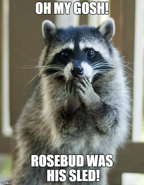 OH MY GOSH! ROSEBUD WAS HIS SLED! | image tagged in shocked raccoon | made w/ Imgflip meme maker