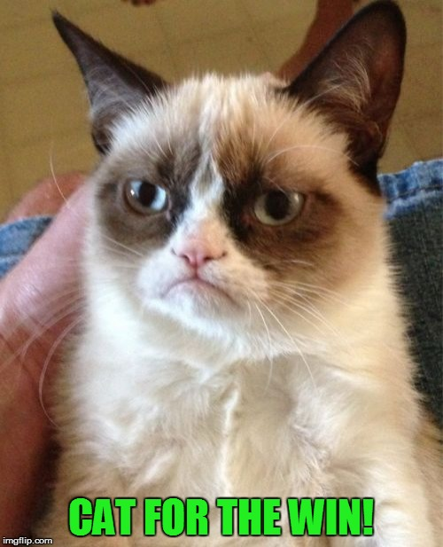 Grumpy Cat Meme | CAT FOR THE WIN! | image tagged in memes,grumpy cat | made w/ Imgflip meme maker
