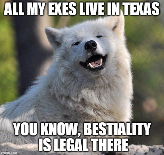 And Texas is a place i dearly love to be! | ALL MY EXES LIVE IN TEXAS YOU KNOW, BESTIALITY IS LEGAL THERE | image tagged in gta san andreas | made w/ Imgflip meme maker