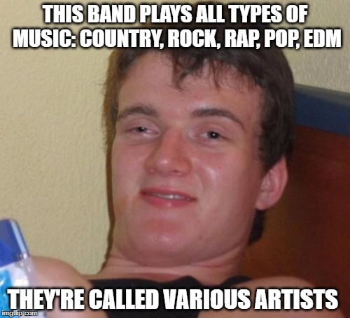 wow, sounds like an awesome band | THIS BAND PLAYS ALL TYPES OF MUSIC: COUNTRY, ROCK, RAP, POP, EDM THEY'RE CALLED VARIOUS ARTISTS | image tagged in memes,10 guy,various artists | made w/ Imgflip meme maker