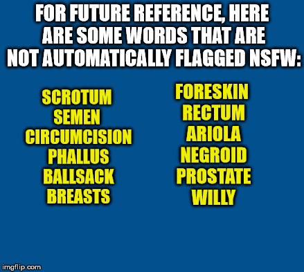 In honor of the now ended NSFW filth week, here are some words that ARE safe for work. | FOR FUTURE REFERENCE, HERE ARE SOME WORDS THAT ARE NOT AUTOMATICALLY FLAGGED NSFW: SCROTUM SEMEN  CIRCUMCISION PHALLUS BALLSACK BREASTS FORE | image tagged in not nsfw | made w/ Imgflip meme maker