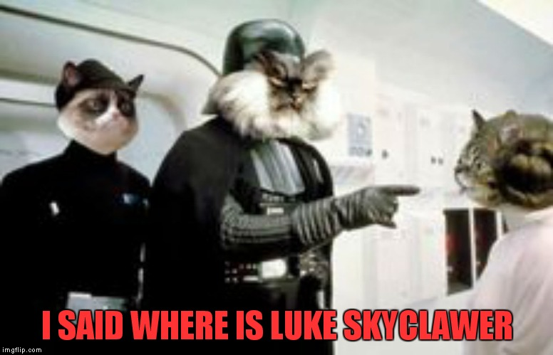 I SAID WHERE IS LUKE SKYCLAWER | made w/ Imgflip meme maker